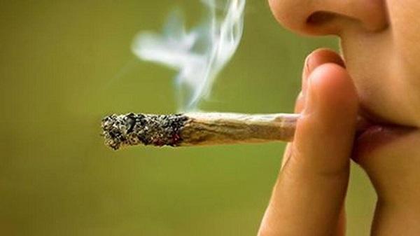 suicide-cannabis