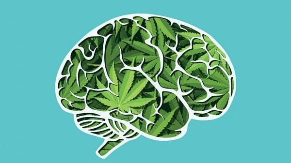 Cannabis_Memory_Restore